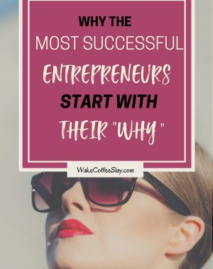 start with why successful entrepreneur